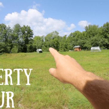 property tour