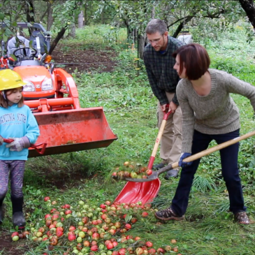 Can Family Chores be Fun?