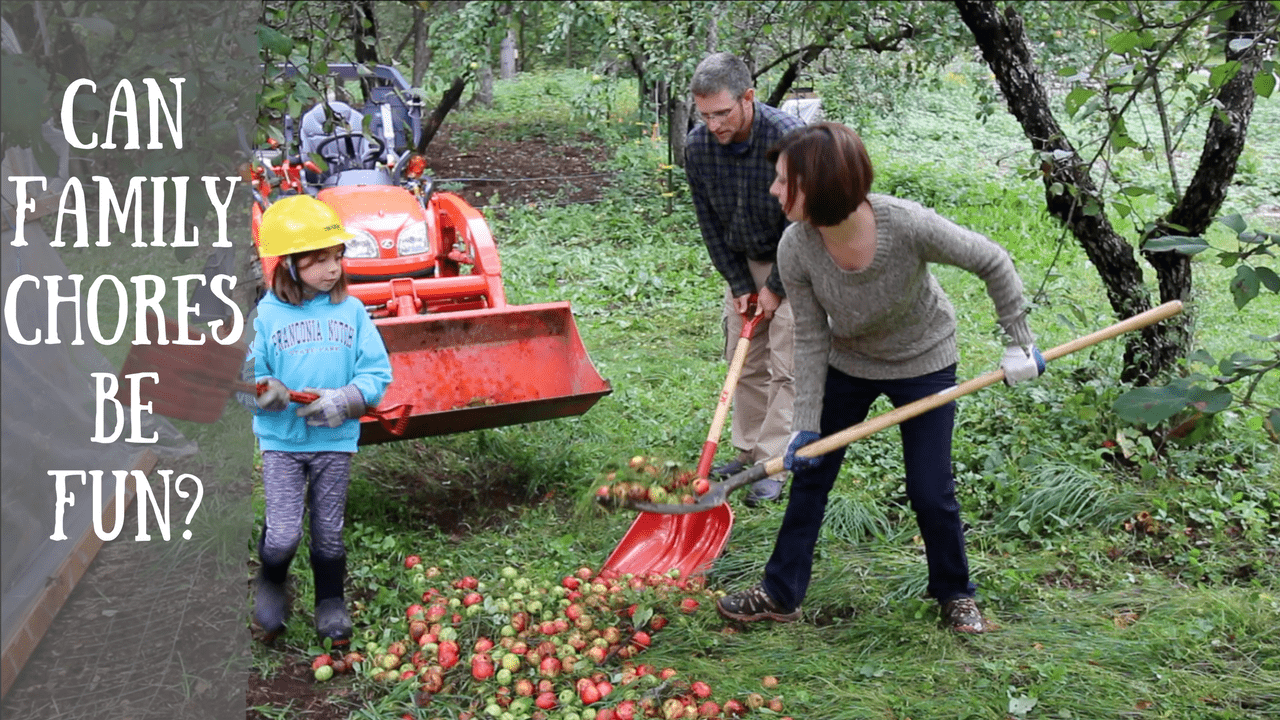 7 Buckets Loads of Apples for the Pigs~